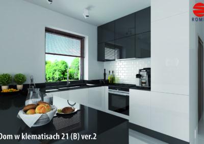 KLEMATISY_21_B-02__k3_1_CMYK